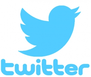Image of Twitter logo, blue bird